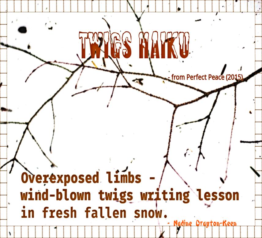 twigs-haiku